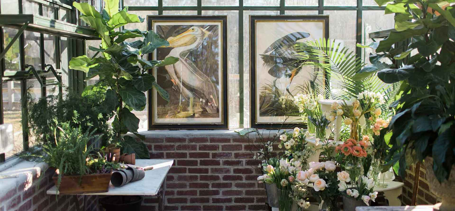 Wintergarden interior with old paintings