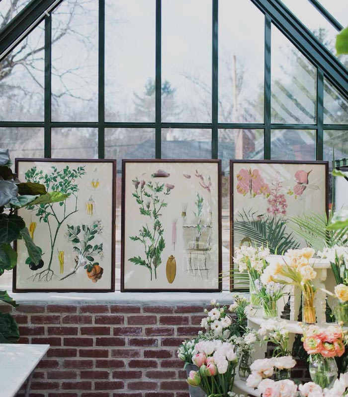 greenhouse interior with view of three antique paintings